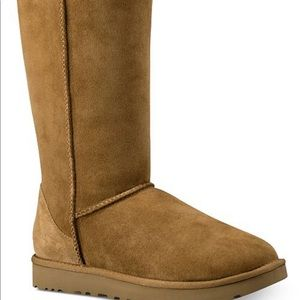 Uggs- Women Tall Brown (8)